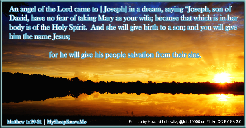 """An angel of the Lord came to Joseph in a dream, saying """"Joseph, son of David, have no fear of taking Mary as your wife; because that which is in her body is of the Holy Spirit. And she will give birth to a son; and you will gie him the name Jesus; for he will give his people salvation from their sins."""""""