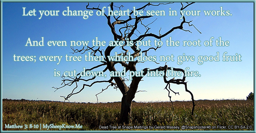 Let your change of heart be seen in your works. And even now the axe is put to the root of the trees; every tree then which does not give good fruit is cut down, and put into the fire.