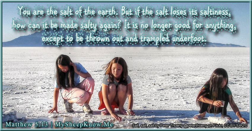 You are the salt of the earth. But if the salt loses its saltiness, how can it be made salty again? It is no longer good for anything, except to be thrown out and trampled underfoot.